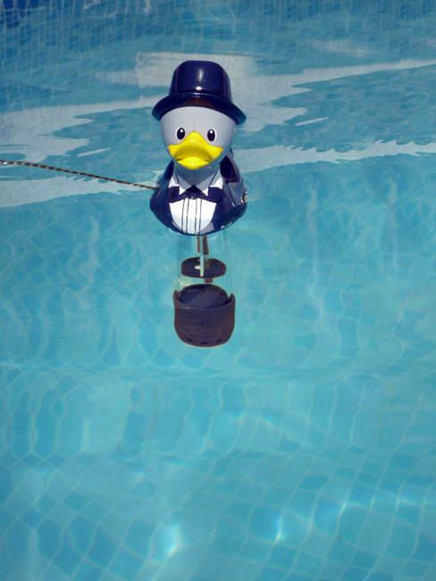 Mini thermomètre duckies classique